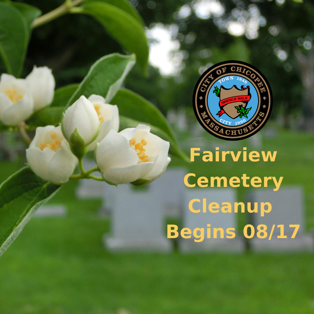 Fairview Cemetery Cleanup
