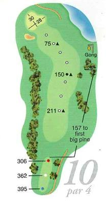 Map of Hole 10