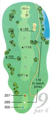 Map of Hole 9